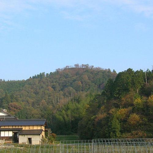 神楽尾城跡