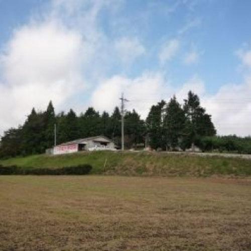 大原観光農園