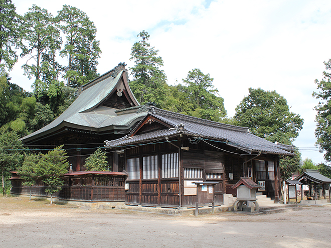 高野神社(宇那提森のムクノキ)