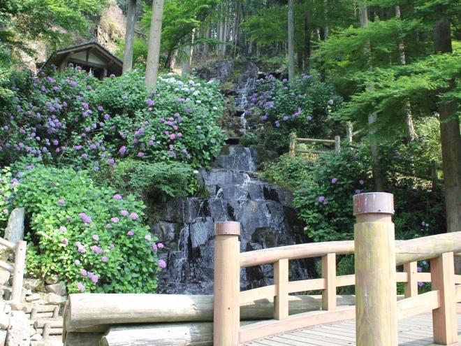 花と渓流の里公園 (小滝)