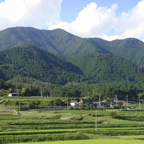 広戸仙(爪ヶ城山)
